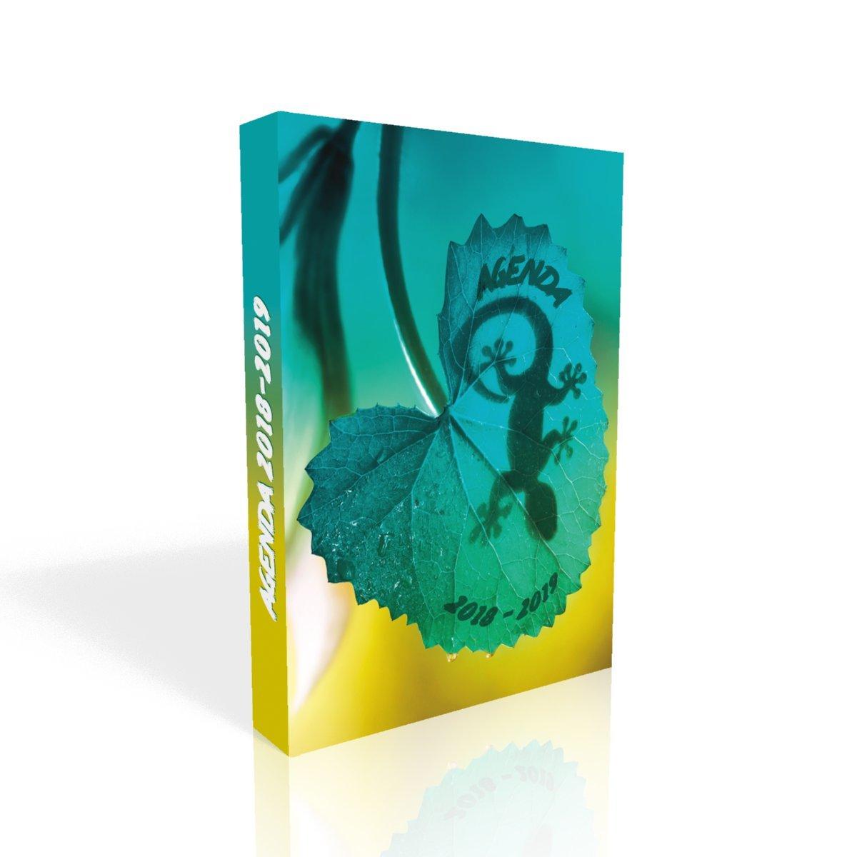 Agenda scolaire 2018-2019 Gecko DNDS