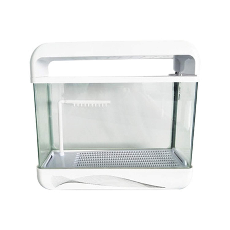 水族館 タートルタンク 乾燥プラットフォーム付き クリエイティブな小さな魚の水槽 B07GPZF7Y9