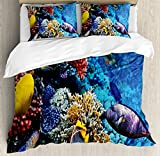 Ocean Duvet Cover Set by Ambesonne, Wild Sea Life Colorful Corals and Fishes in Egyptian Sea Sharm El Sheikh Africa Image, 3 Piece Bedding Set with Pillow Shams, King Size, Multicolor