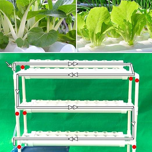 LianDu Kit de Cultivo Hidropónico 90 Sitios de Plantas 3 Capas ...
