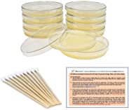EZ BioResearch Bacteria Science Kit (IV): Top Science Fair Project Kit. Prepoured LB-Agar Plates And Cotton Swabs. Exclusive