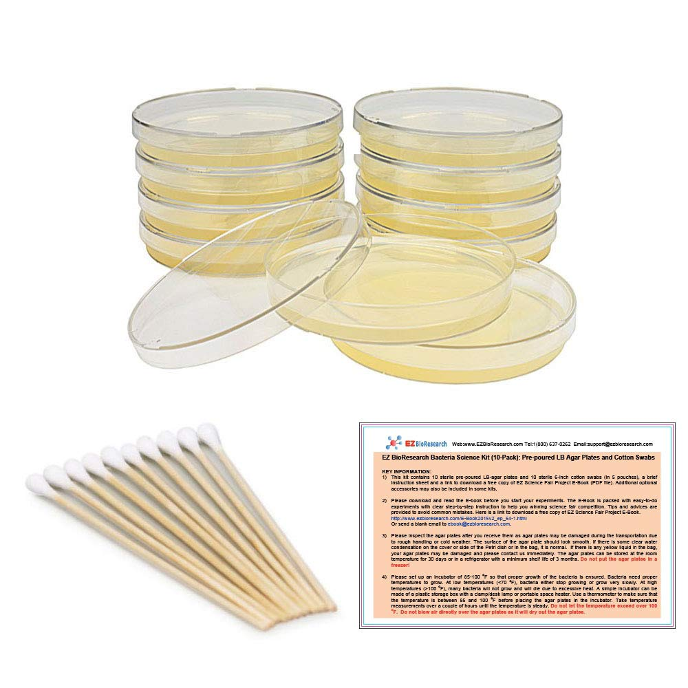 EZ BioResearch Bacteria Science Kit (IV): Top Science Fair Project Kit. Prepoured LB-Agar Plates And Cotton Swabs. Exclusive Free Science Fair Project E-Book Packed With Award Winning Experiments.