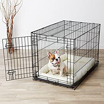 Amazon Com Amazonbasics Single Door Dog Crate And Padded