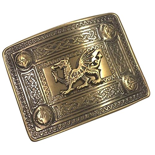 (Tartan City Scottish Kilt Belt Buckle Welsh Dragon Antique Finish/Celtic Kilt Belt Buckle 4 Dome Mirror Design)