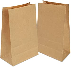100 Pack Small Paper Bags,Paper Food Bags,Paper Lunch Bags,Kraft Paper Bags, Paper Recycling Bags for Christmas Wedding Birthday Party 70 g./m2