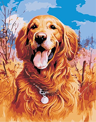 TianMai New Paint by Number Kits - Golden Retriever Dog 16x20 inch Linen Canvas Paintworks - Digital Oil Painting Canvas Kits for Adults Children Kids Decorations Gifts (with Frame)