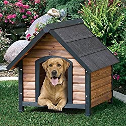 """Large, Better Quality of Living Dog House, 32""""L x 40""""W x 34""""H"""