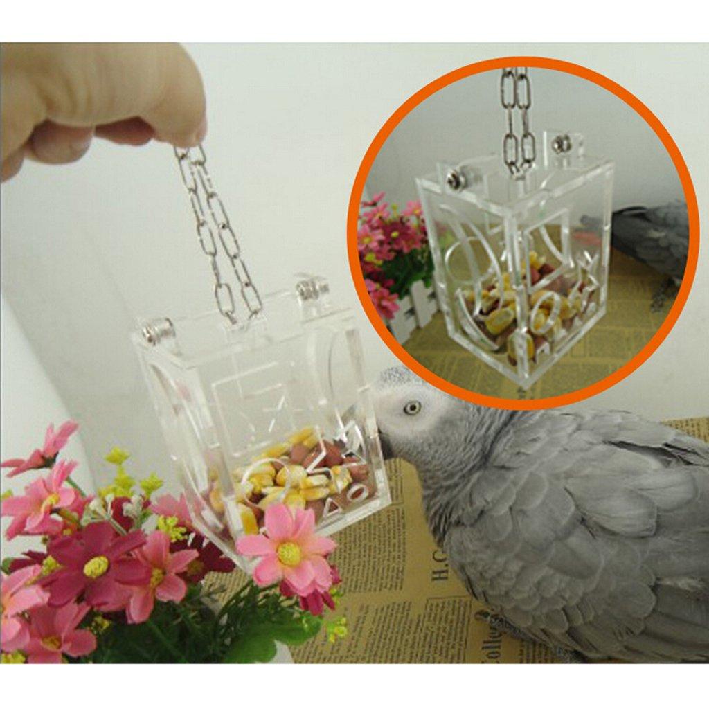 Boîte Nourriture Alimentation Gamelle pour Perroquet Oiseaux Jouet Generic