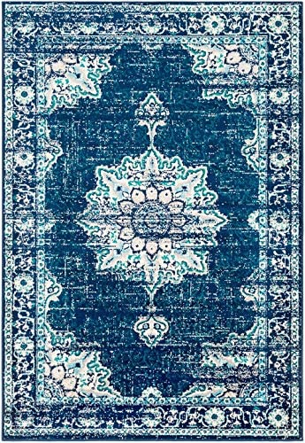 Cantonment Updated Vintage Farmhouse 8'10″ x 12'10″ Area Rug