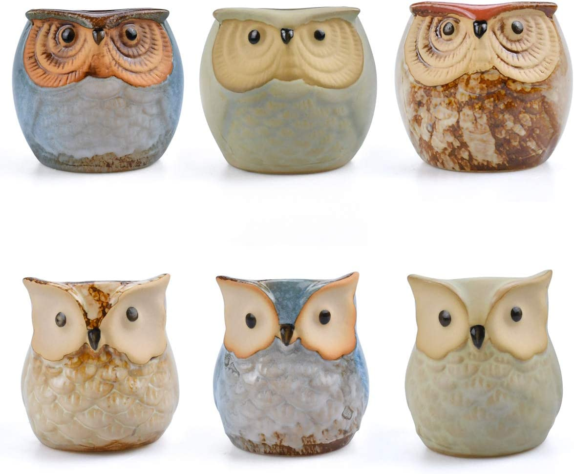 NOBBEE Succulent Plant Pot Small Garden Pot 6 Pieces Ceramic Owl Pots Desk Plant Pots Cactus Planter Holder Container with A Hole