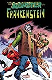 img - for Monster of Frankenstein Vol. 1 book / textbook / text book