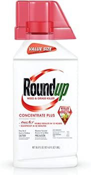 Roundup Concentrate Plus Weed Killer