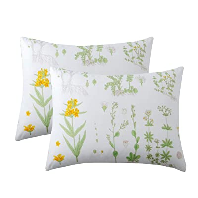 Feelyou Yellow Green Botanical Pillowcases Set of 2 Standard Size Queen Pillow Covers for Girls Women Vivid Floral Flowers Branches Microfiber Bed Pillow Shams, Decorative, Soft,Envelope Closure: Home & Kitchen