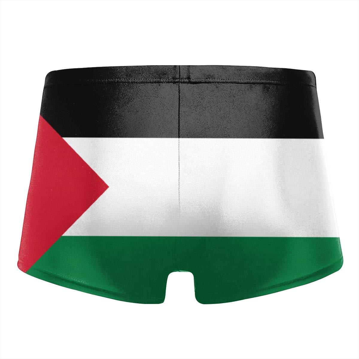 Henry Malthus Flag of Palestine Basic Men Swimwear Swim Boxer Trunks Surf Shorts