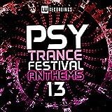 Psy-Trance Festival Anthems, Vol. 13 [Explicit]