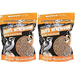 (2 Pack) Mealworm To Go Dried Mealworm Wild Bird Food, 30 oz