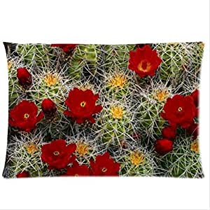 Beautiful Cactus Flower Design Desert Cactus Sunset Pillowcase,Twin Sides Pillowcase Pillow Cover 20x30 inches by ruishername
