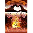 Sparked By Fire (Dorado, Texas Book 4)
