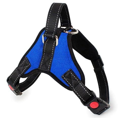 Corbata Ajustables Collar De Perro Personalizado Nylon Collares De ...