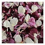 Rose Petals 240 cups. Seduction Blend Rose Petals Wedding Decoration