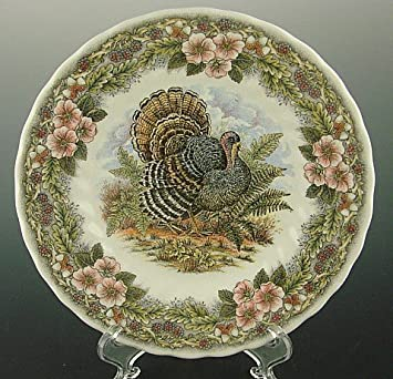 Amazon.com | Queenu0027s Myott by Churchill 8  SALAD / Side Plates Thanksgiving Turkey Multi-Color Set of 4 Accent Plates & Queenu0027s Myott by Churchill 8