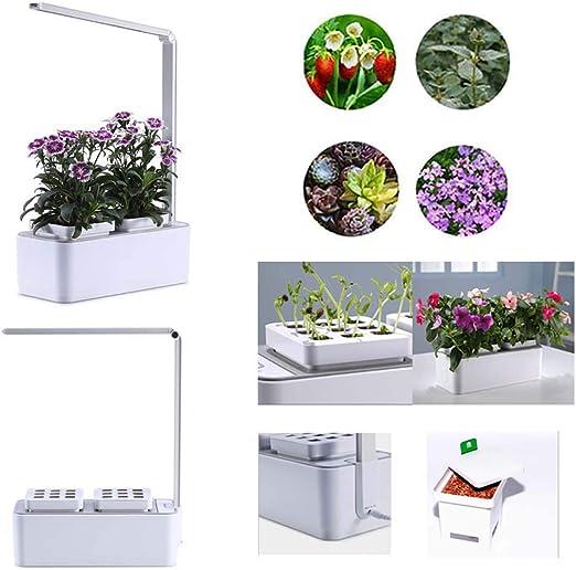 Gmadostoe Inteligente hidropónic Maceta, Jardín Interior hidropónic Kit, cultiva hasta 18 Plantas en 25 a 40 días, luz de Crecimiento LED, automático irrigación para Flores/Frutas/Vegetales: Amazon.es: Hogar