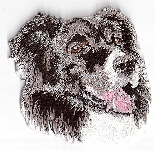 2.25Border Collie Canine Dog Breed Embroidery Applique Patch