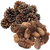 handrong 46 Pine Cones Assorted Size Natural Pinecones for DIY Crafts Christmas Tree Hanging Ornaments Holiday Party Home Decoration Bowl Vase Filler