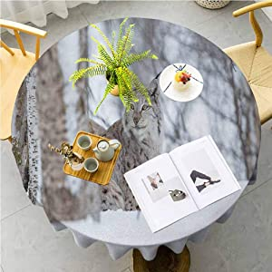 JKTOWN Animal Polyester Table Covers Circle Table Cloth Machine Washable, Durable Table Cloths 70 inch European Lynx Snowy Cold Forest Norway Nordic Country Wildlife Apex Predator Light Brown White