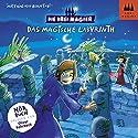 Das magische Labyrinth (Die Drei Magier 1) Hörbuch von Matthias von Bornstädt Gesprochen von: Oliver Rohrbeck