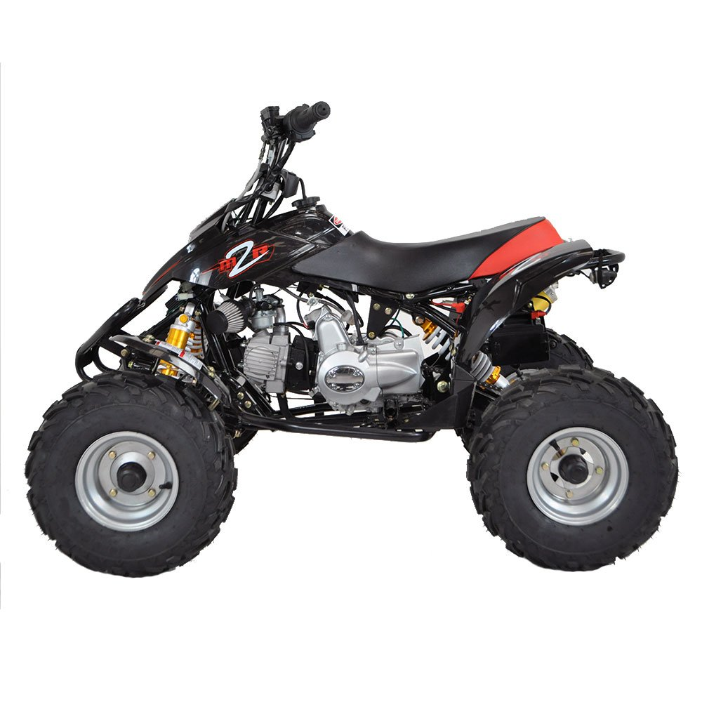 yamaha raptor atv 12 volt battery powered ride on autos post. Black Bedroom Furniture Sets. Home Design Ideas