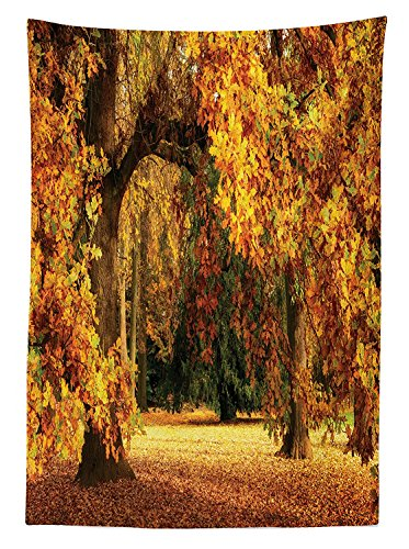 vipsung Scenery Decor Tablecloth Tranquil Autumn Season in Park with Faded Fall Leaves Pastoral Woodland Dining Room Kitchen Rectangular Table Cover Orange and Brown