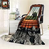 YOYI-HOME Plush Throw Duplex Printed Blanket Super Soft and CozyModern Surreal Landscape Forest Tree in Frame Stones Art Photo Charcoal Grey Dark Orange Green Blanket Perfect for Couch Sofa/W79 x H47
