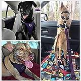 Lukovee Dog Safety Vest Harness Seatbelt, Dog Car