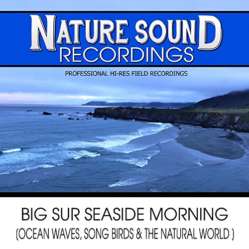 Big Sur Seaside Morning (Ocean Waves, Song Birds & The Natural World