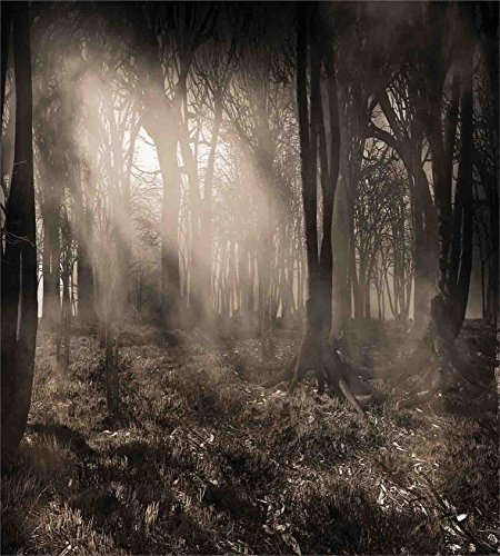 Ambesonne Gothic Decor Duvet Cover Set, Photo of Dark Forest Scenery with Sunbeams and Fog Vintage Nostalgic Colors Gothic Fantasy Art, 3 Piece Bedding Set with Pillow Shams, Queen/Full, Brown