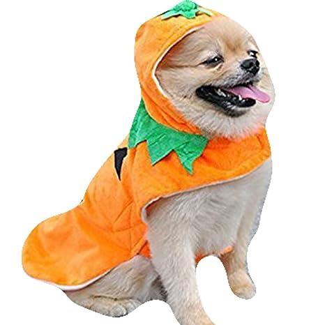 natural Home (TM) hundek ostuem Halloween Ropa para Perros Grandes pequeños perros, perro