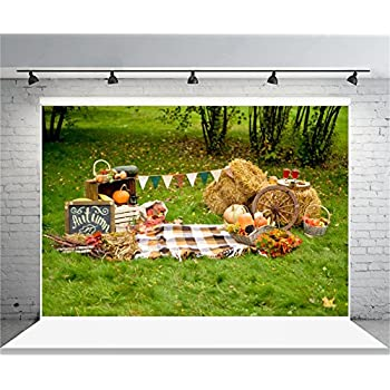 amazoncom aofoto 8x6ft farm backdrops shabby vintage