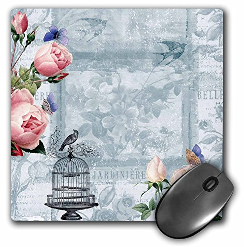 Price comparison product image 3dRose Roses and Bird Cage Vintage floral - Mouse Pad, 8 by 8 inches (mp_123582_1)