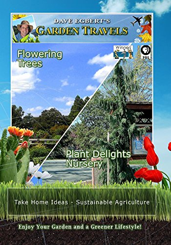 Garden Travels Flowering Trees Plant Delights Nursery - Plant Delights Nursery