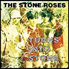 Turns Into Stone (Ogv) (Dlx) [VINYL]