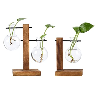 TQVAI Air Planter Terrarium Glass Vase(3 Bulb Vase) with Retro Wooden Stand and Metal Hanging Holder Cute Air Plant Globe Orbs- Ideal for Home Office Decoration, High/Low Style: Home & Kitchen