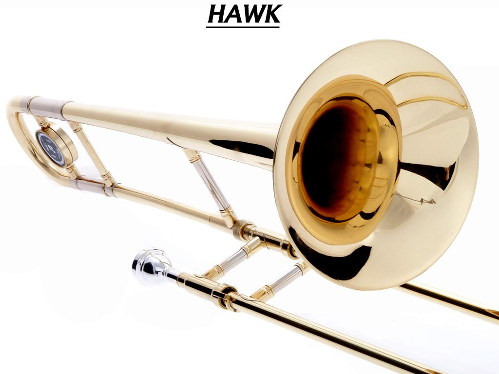 Hawk WD-TB315 Slide Bb Trombone with Case and Mouthpiece, Gold Lacquer by Hawk (Image #3)