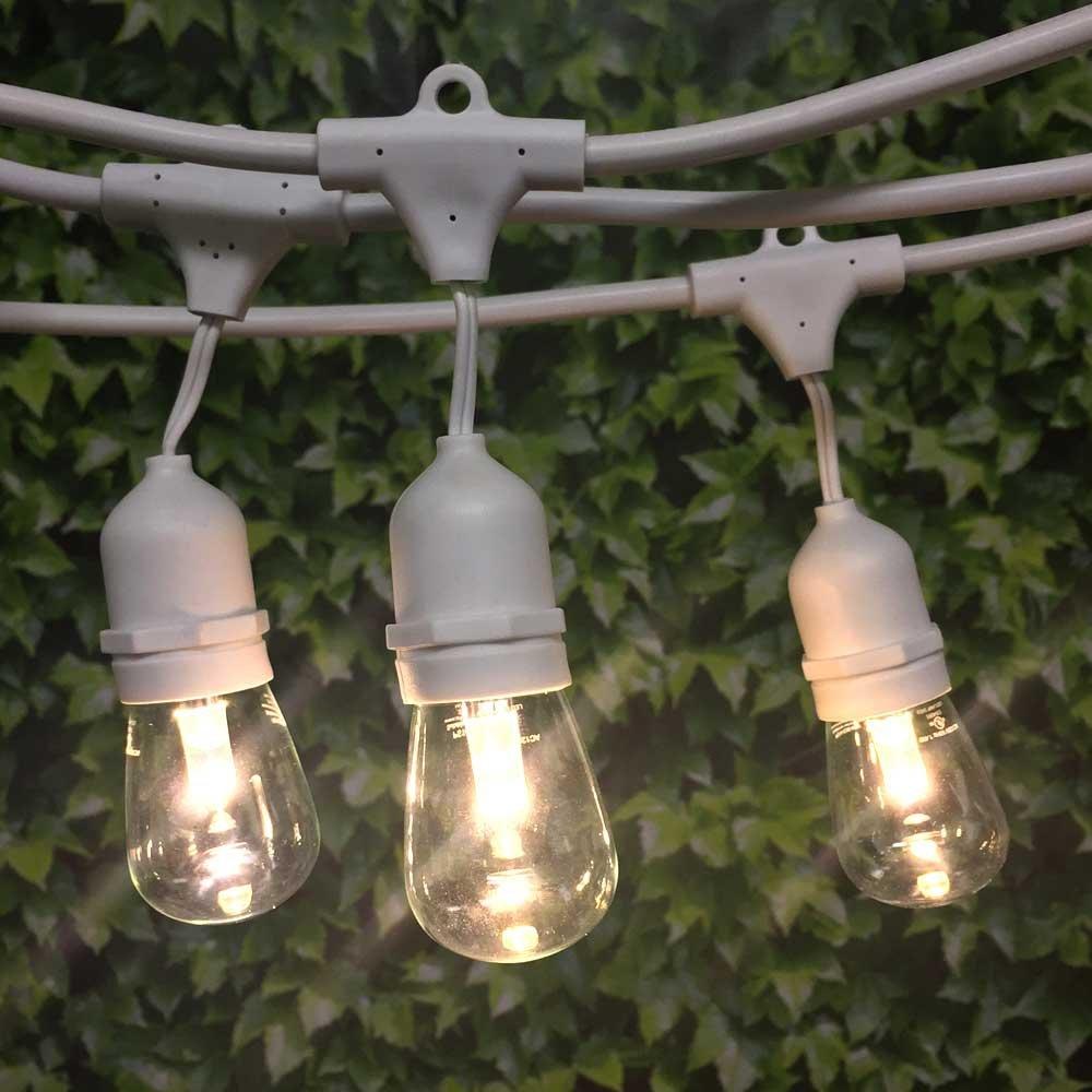 LED Commercial String Light - 100 ft White Susp - LED S14 Prof Bulb WW