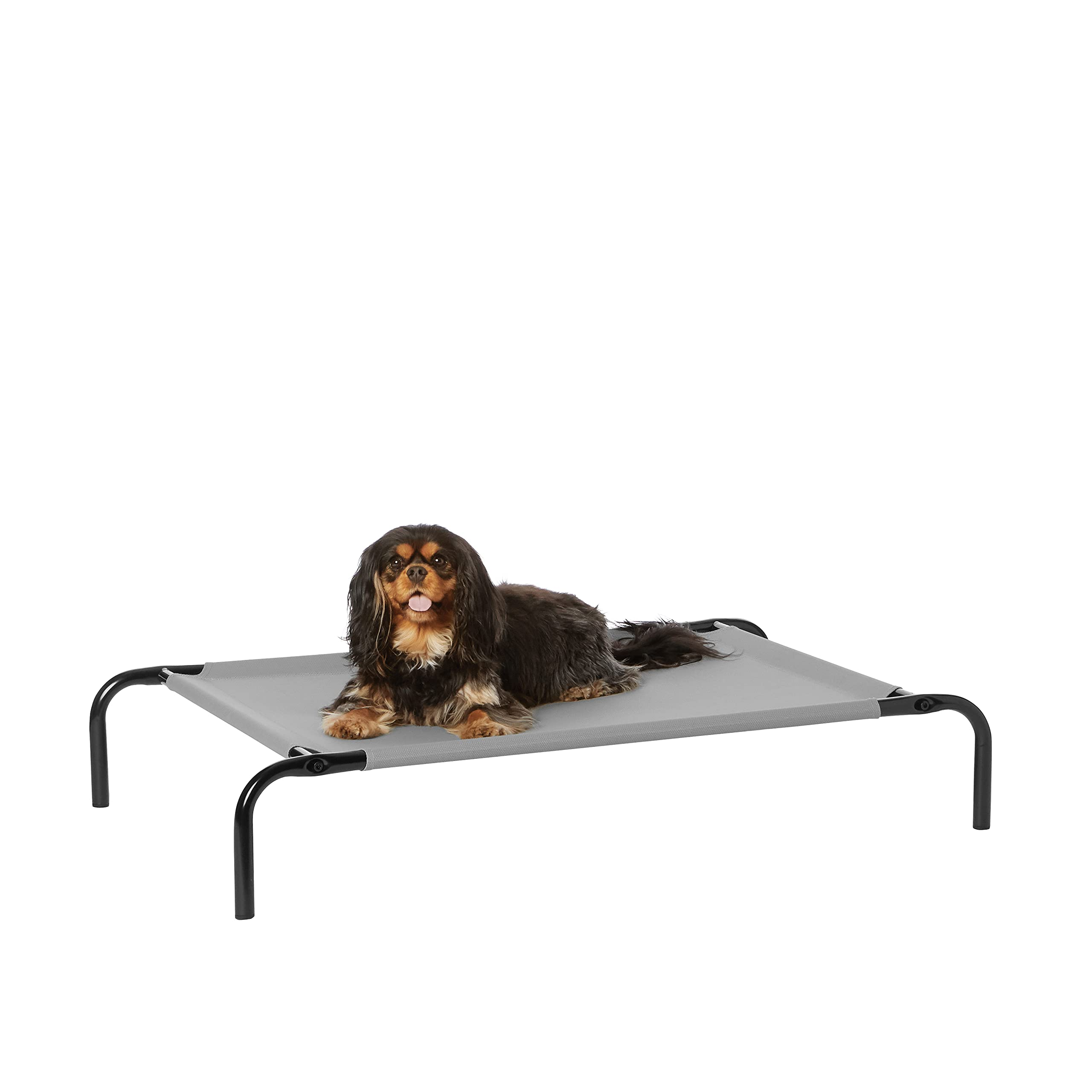 Amazon Basics Cooling Elevated Pet Bed