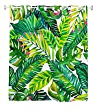 Goodbath Hookless Shower Curtains, Banana Leaves Floral Fabric Waterproof and Mildew Resistant Bathroom Curtain Set with Hooks, Green White