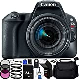 Canon EOS Rebel SL2 DSLR Camera with 18-55mm Lens (Black) - 12PC Accessory Bundle Includes 64GB SD Memory Card + 3 Piece Filter Kit + High Power Automatic Flash with LED Video Light + MORE