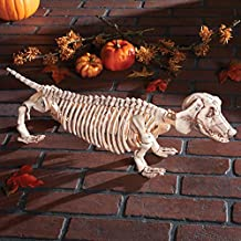 Halloween Posable Skeleton Spooky Scary Haunted House Prop Decoration (dachshund)