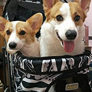 Light Weight Pet Stroller for Cats & Dogs | Smart Design Folds Down to a Large Hand Bag Size | Folding Puppy & Kitten Carrier Perfect for Pet Travel by ibiyaya