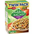 Betty Crocker Dry Meals Suddenly Salad Classic Twin Pack, 15.5 Ounce